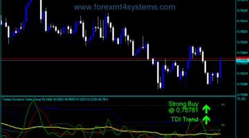 Forex Traders Dynamic Index Indicator