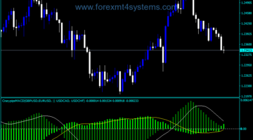 Forex MACD Crazy Pips Indicator