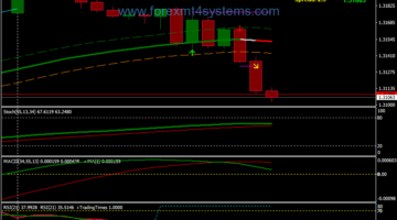 Forex Egwig Buy Sell Trading System