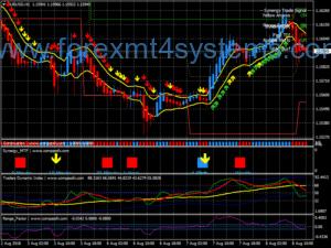Forex Synergy Trend Rider v2 система за търговия